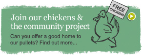 Join our chickens and the community project